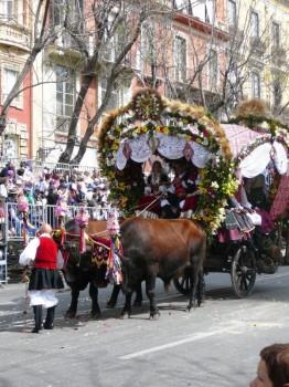 163 Cagliari - Tracca alla festa di S.Efisio.preview