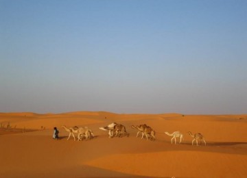 2-mauritania-chinguetti-0061-800x600