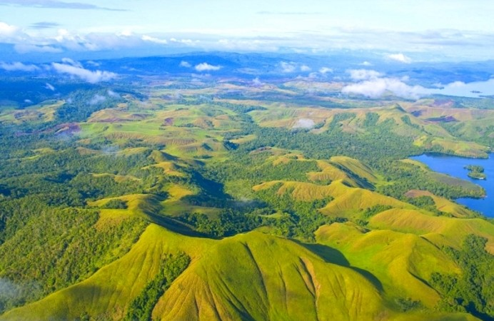 aerial-photo-of-the-coast-of-papua-new-guinea-with-jungles-and-deforestation_69593212