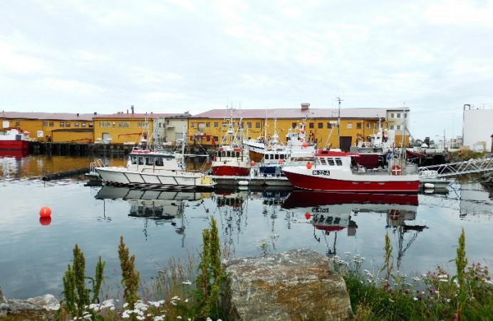 andenes-on-andoya-island-in-vesteralen-group-norway-13-0