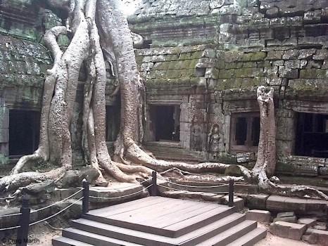 Angkor-Wat-466x350