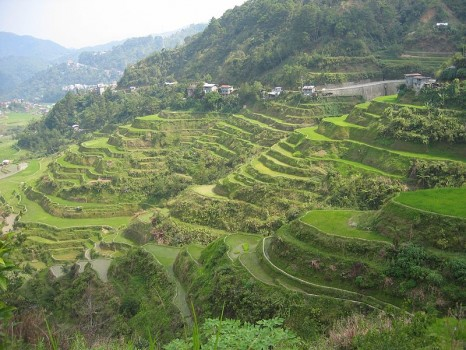 Banaue Rice Terraces - Photo by Bangaliboy