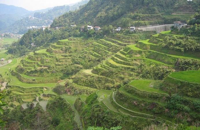 Banaue Rice Terraces - Photo by Bangaliboy