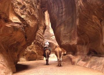 Camminare-a-Petra-800x600