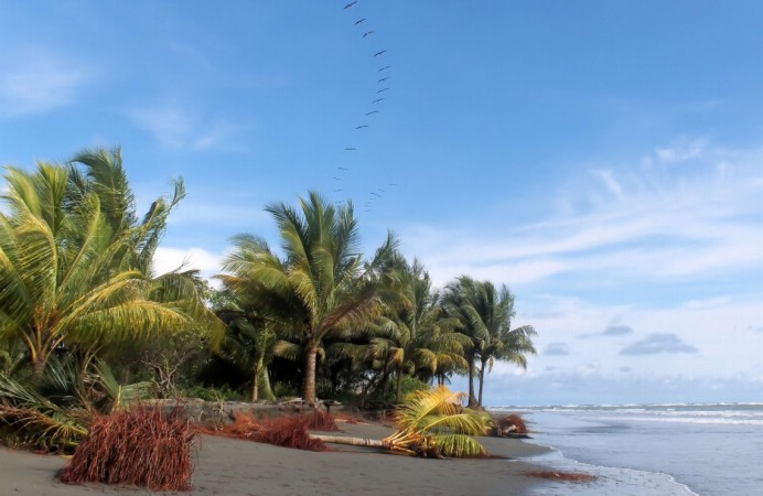 ladrilleros_beach_colombia