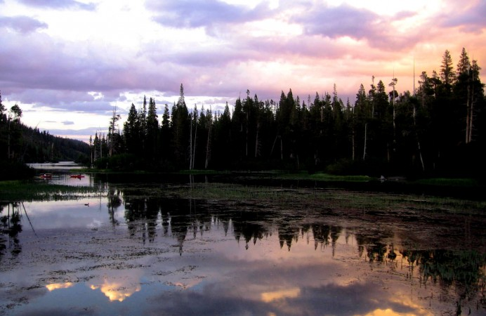 Tree_relection_Twin_Lakes_Sunset,_Mammoth_Lakes,_California