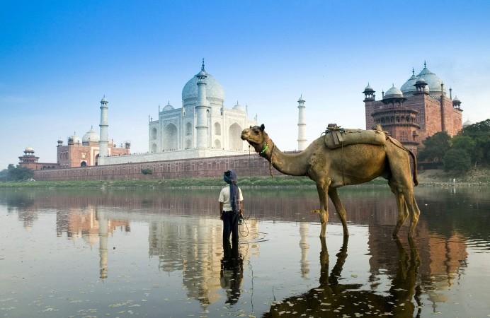 Yamuna_River,_Agra,_Uttar_Pradesh,_India (1)