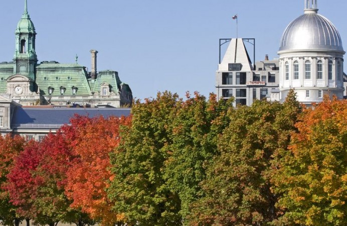 city-hall-of-montreal-and-bonsecours-market-in-autumn