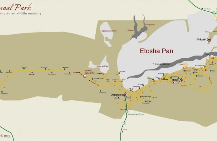 etoshs-nazional-park