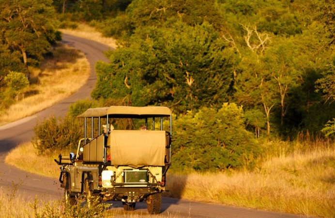 l_kruger-park-game-drive-full-screen-1500x630