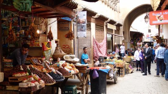 tour a marrakech