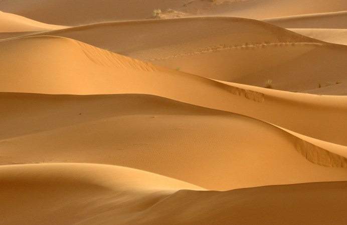 sfondo deserto_4f80501413da2