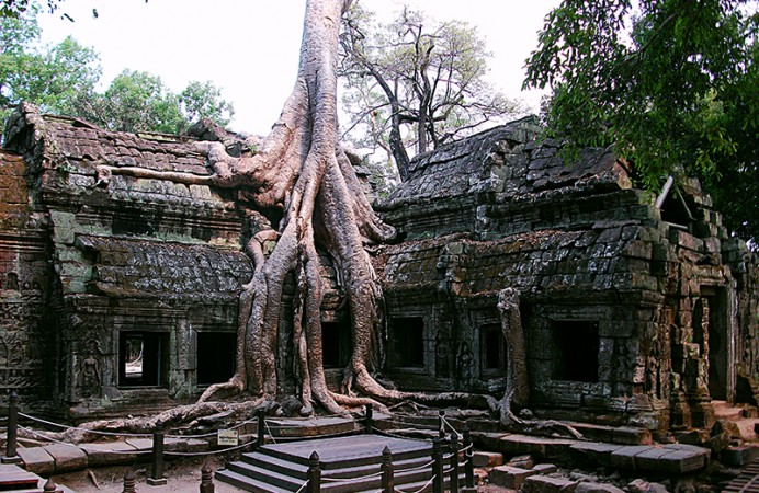thumb-ta_prohm