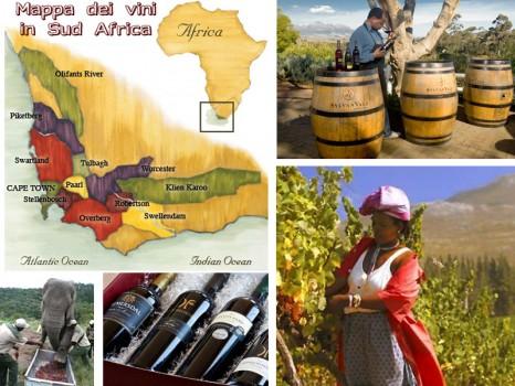 vini-sudafricani